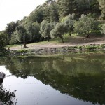 800px-PikiWiki_Israel_8064_Lake_in_Carmel_Mountain_
